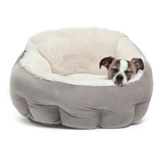 choosing the right dog bed