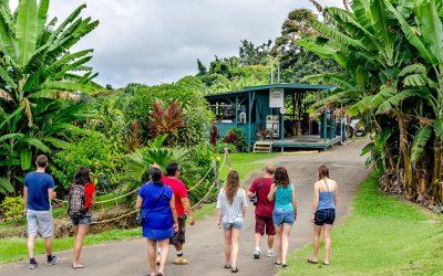 island hopping Kailua kona hi