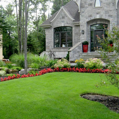 Great landscaping contractor