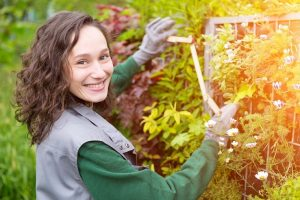 landscape contractor and get the best services