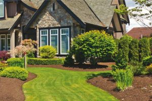 Easy Ways to Find Affordable Landscaping Ideas Quickly